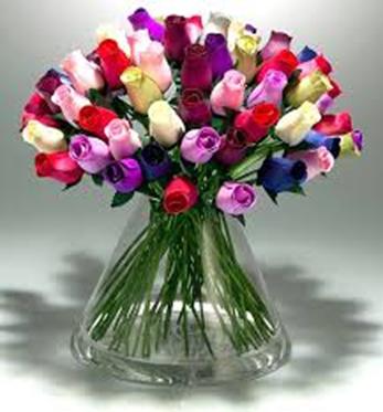 tulipany_dzien_21.png
