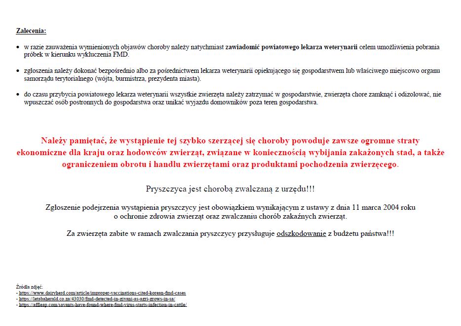 pryszcz_2.png